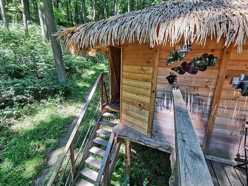 Příroda v okolí Bratislavy